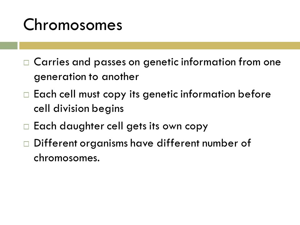 Chromosomes Carries and passes on genetic information from one generation to another.