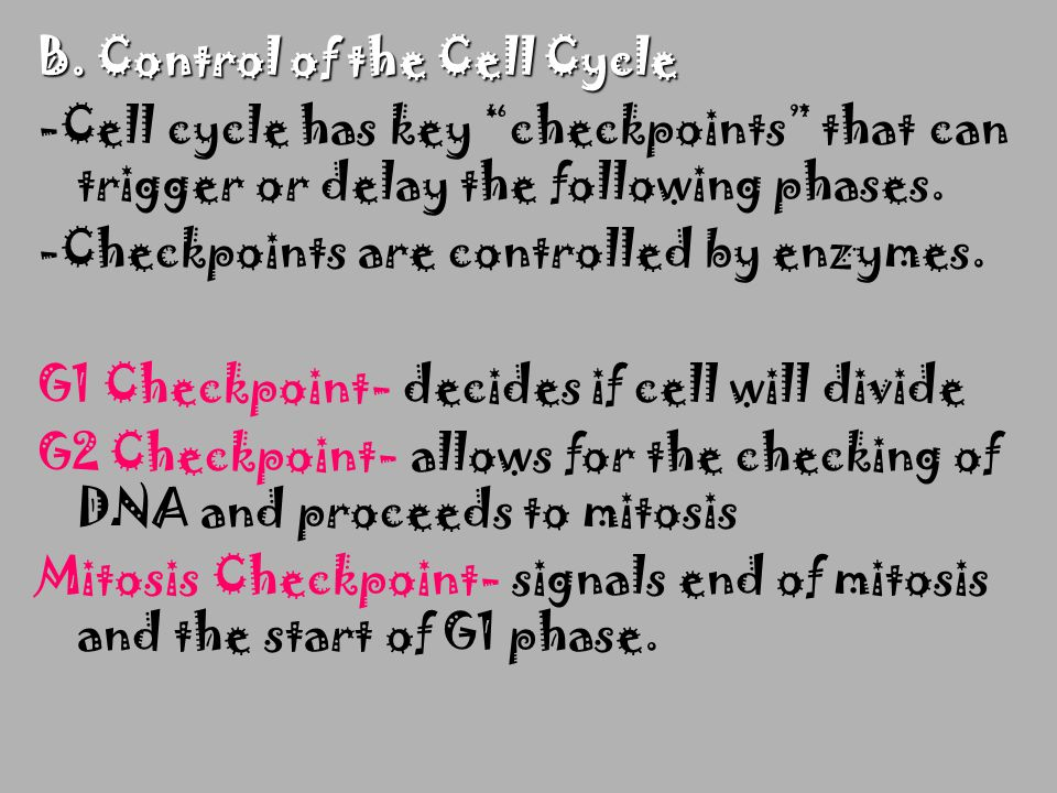 B. Control of the Cell Cycle