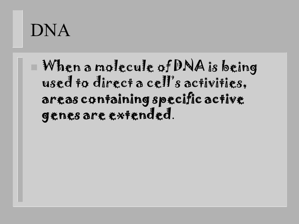 DNA When a molecule of DNA is being used to direct a cell's activities, areas containing specific active genes are extended.