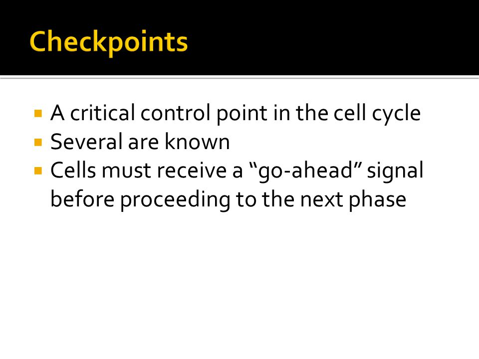Checkpoints A critical control point in the cell cycle