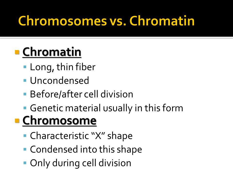 Chromosomes vs. Chromatin