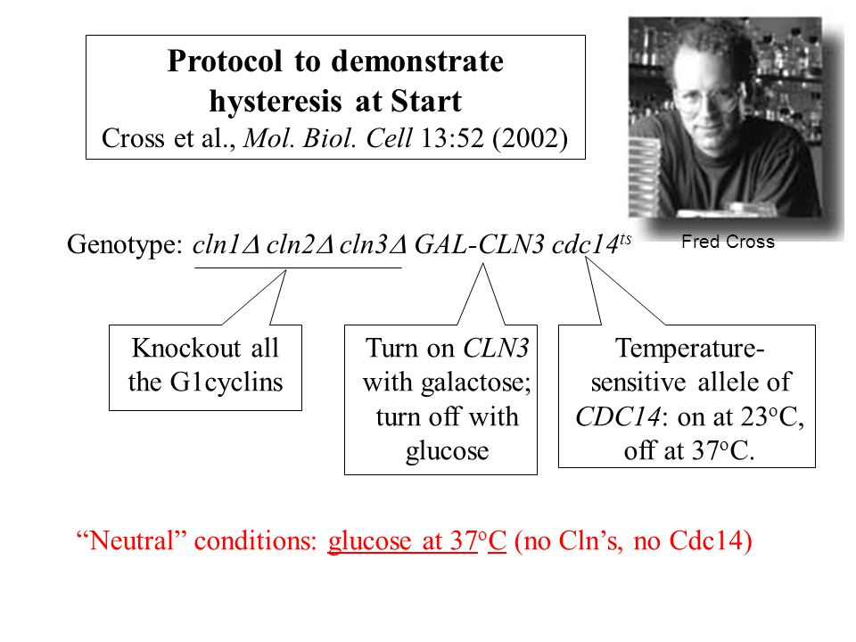 Protocol to demonstrate hysteresis at Start