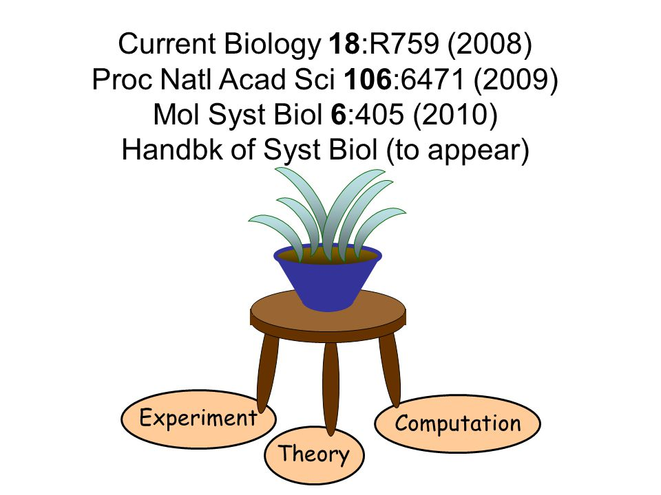 Handbk of Syst Biol (to appear)