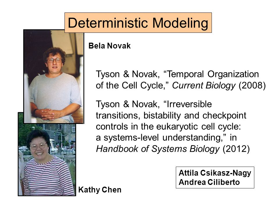 Deterministic Modeling