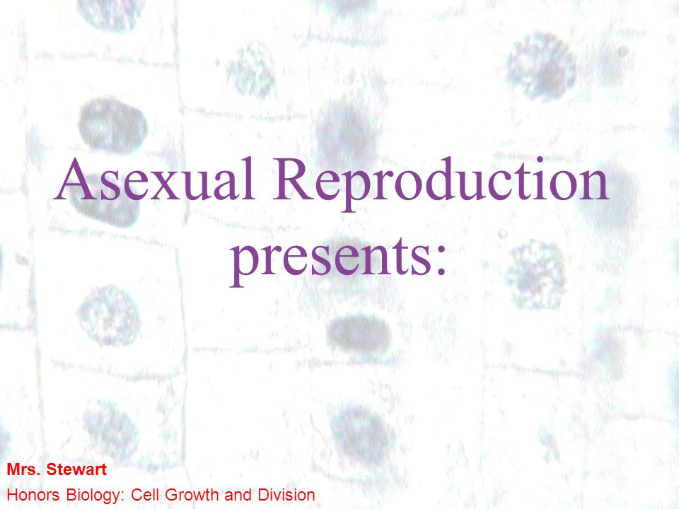 Asexual Reproduction presents: Mrs. Stewart