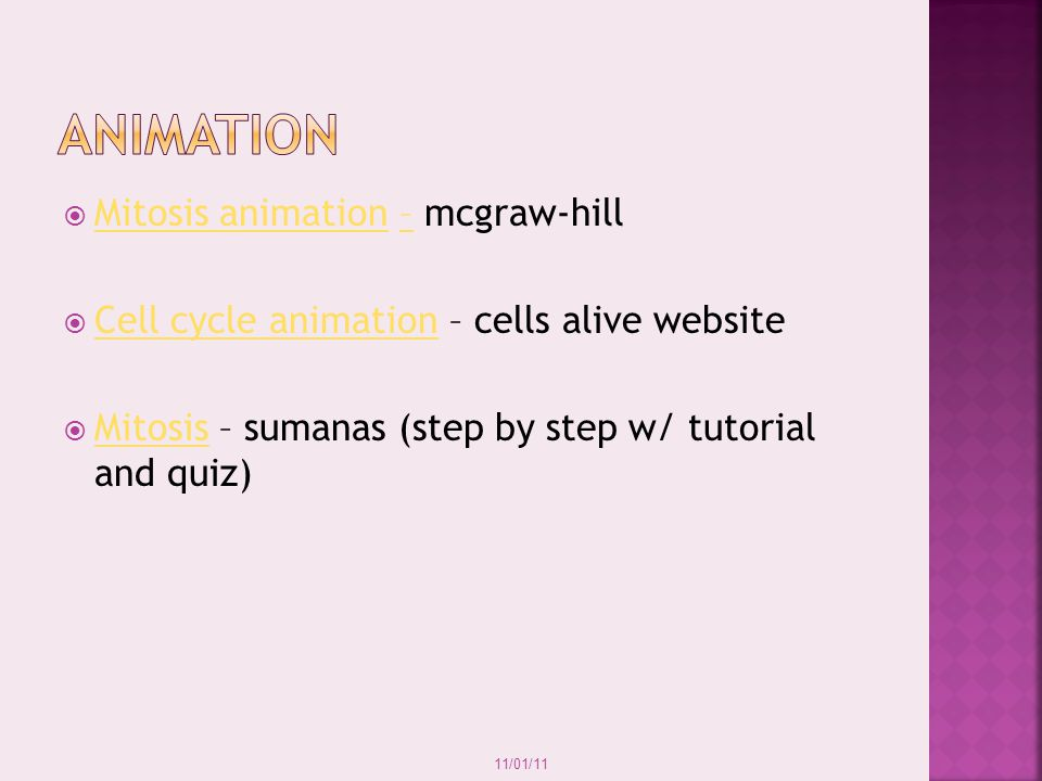 animation Mitosis animation – mcgraw-hill