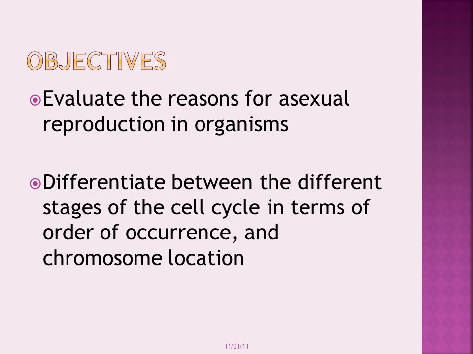 Objectives Evaluate the reasons for asexual reproduction in organisms