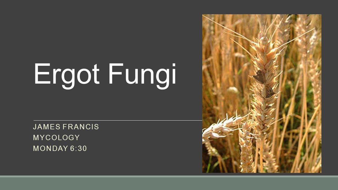 JAMES Francis Mycology Monday 6:30