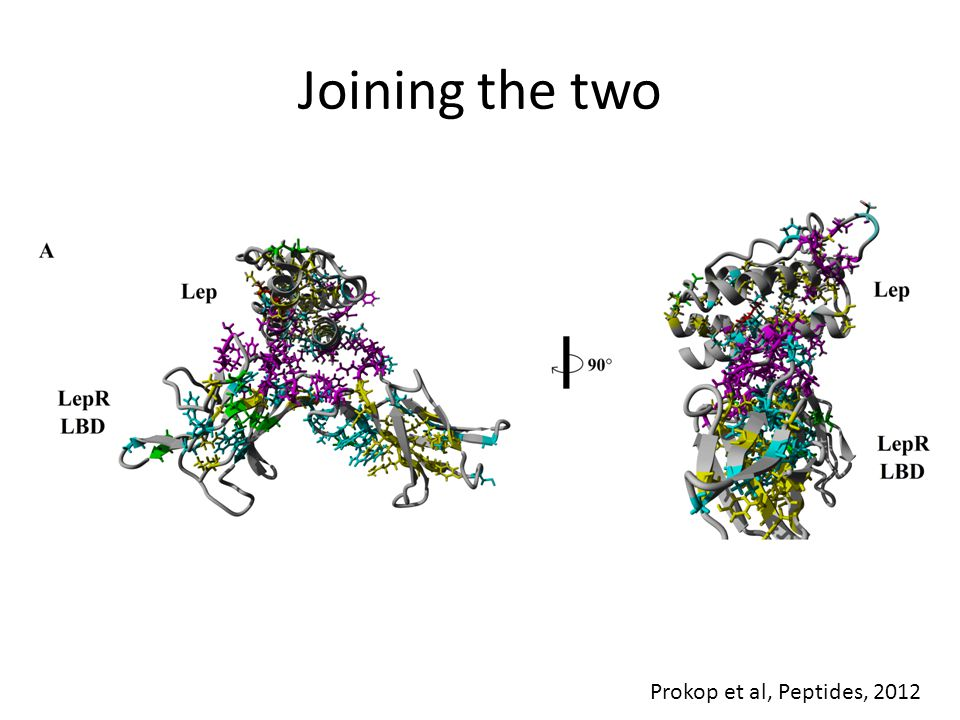 Joining the two Prokop et al, Peptides, 2012