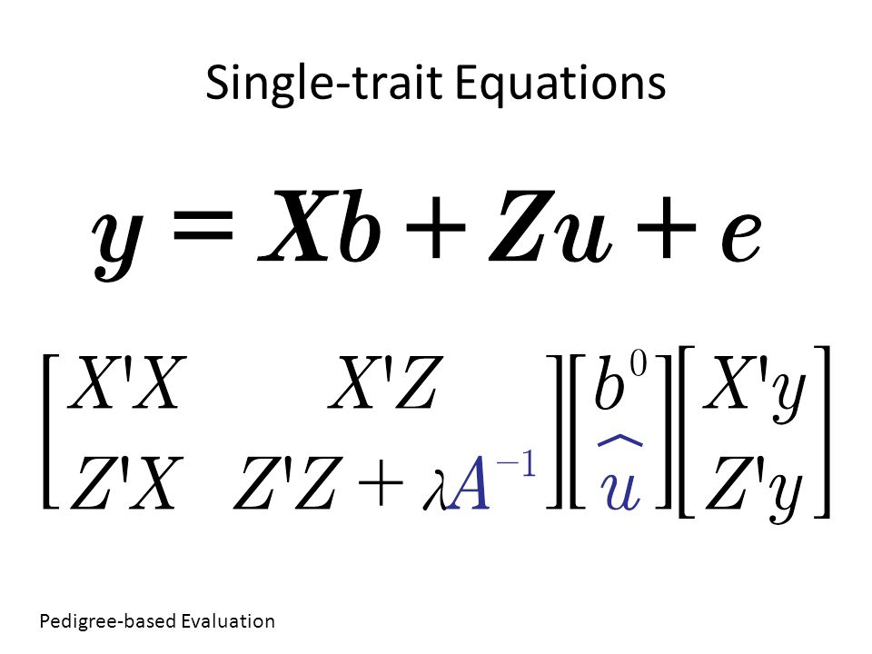 Single-trait Equations