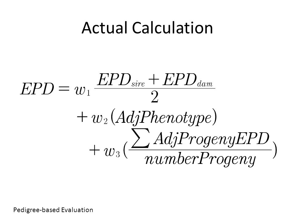 Actual Calculation Pedigree-based Evaluation