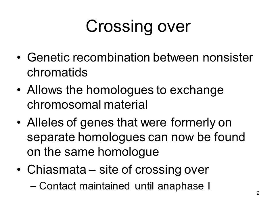 Crossing over Genetic recombination between nonsister chromatids
