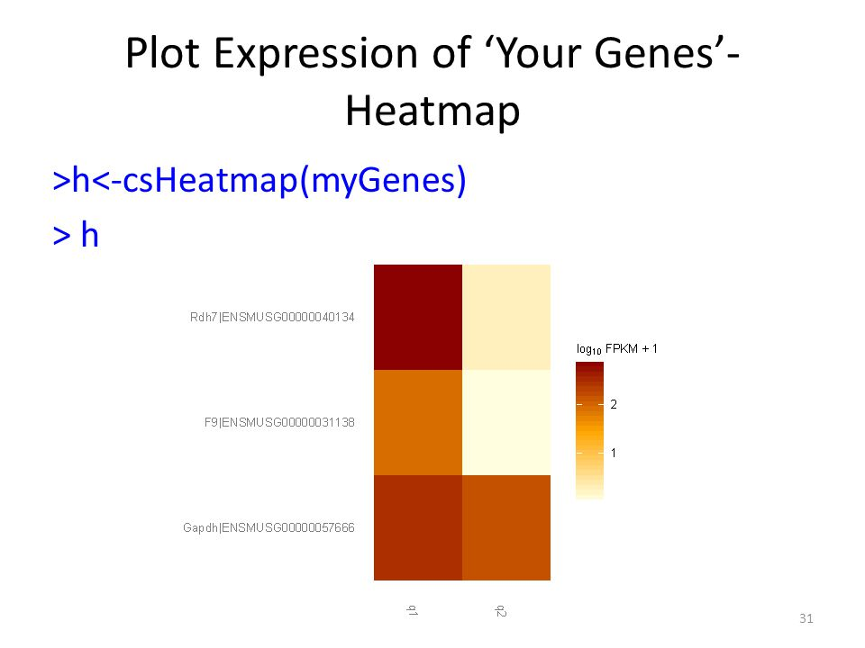 Plot Expression of 'Your Genes'-Heatmap
