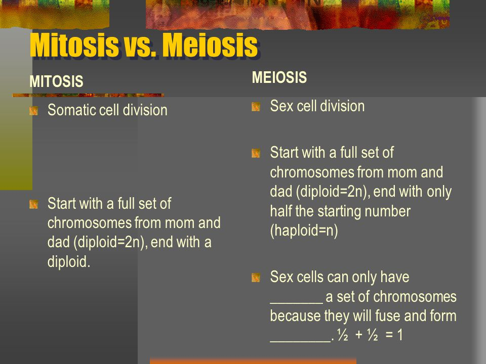 Mitosis vs. Meiosis MEIOSIS MITOSIS Sex cell division