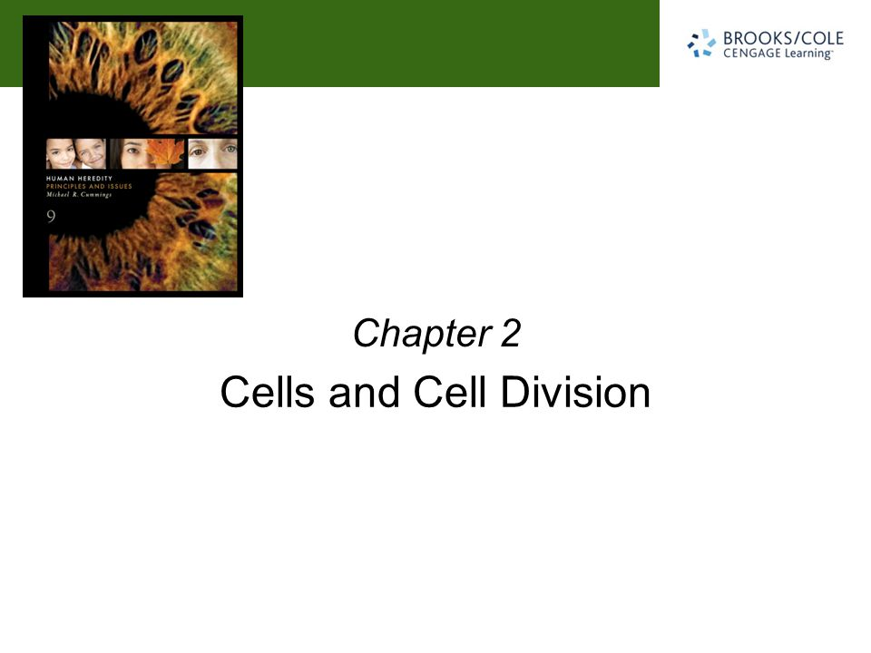 Cells and Cell Division