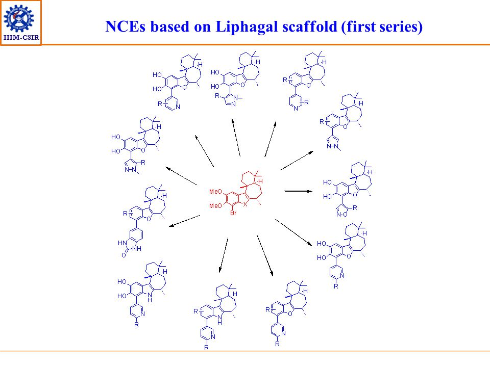 NCEs based on Liphagal scaffold (first series)