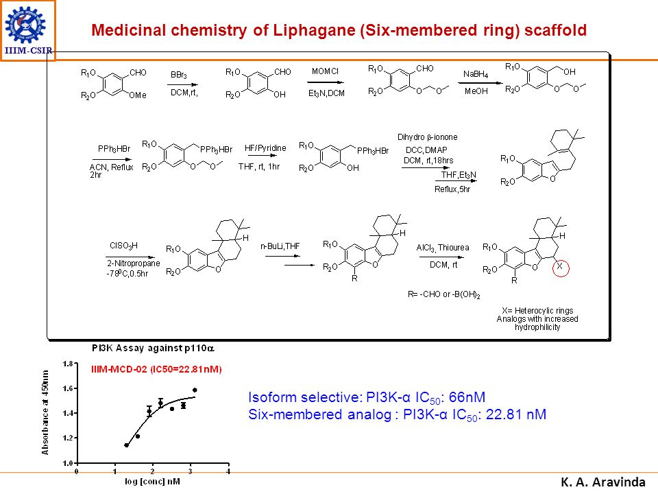 Medicinal chemistry of Liphagane (Six-membered ring) scaffold