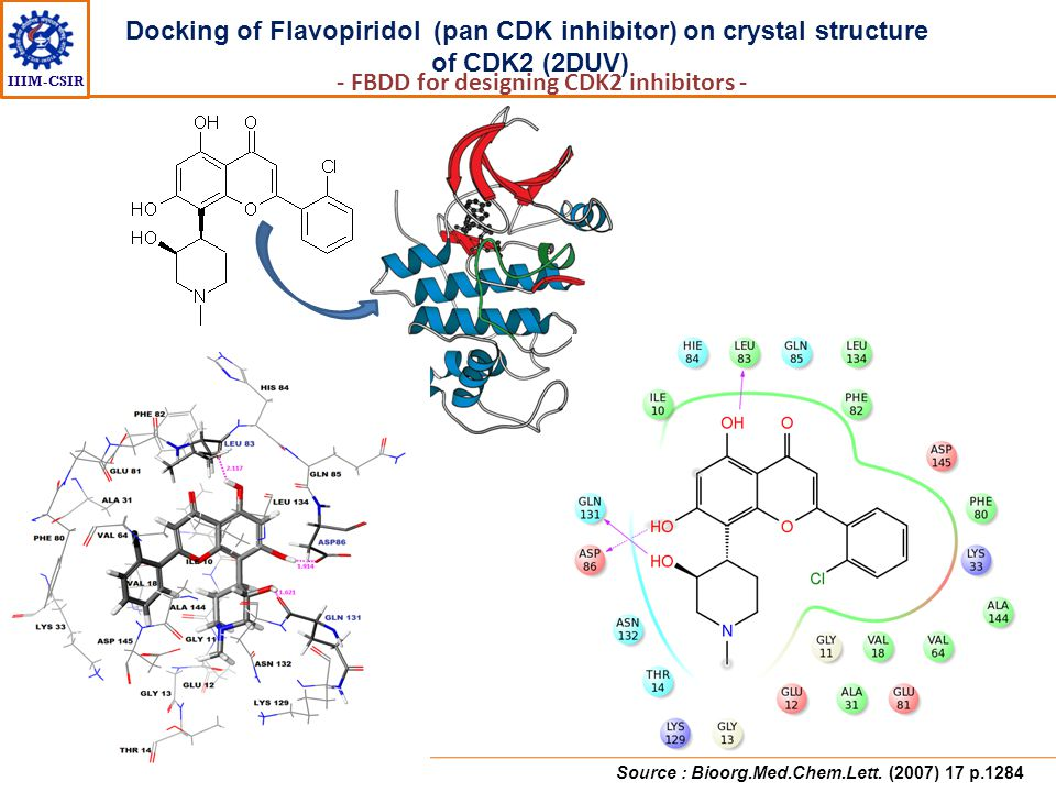 Docking of Flavopiridol (pan CDK inhibitor) on crystal structure