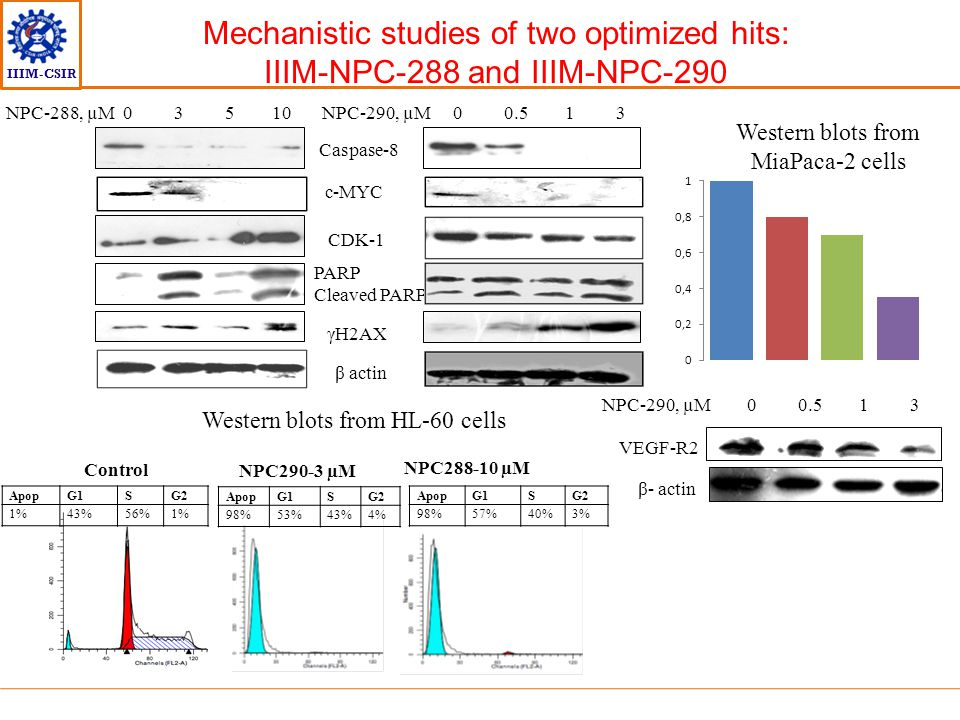 Mechanistic studies of two optimized hits: