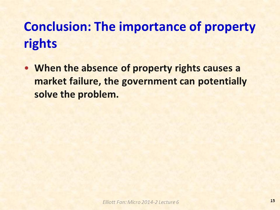 Conclusion: The importance of property rights