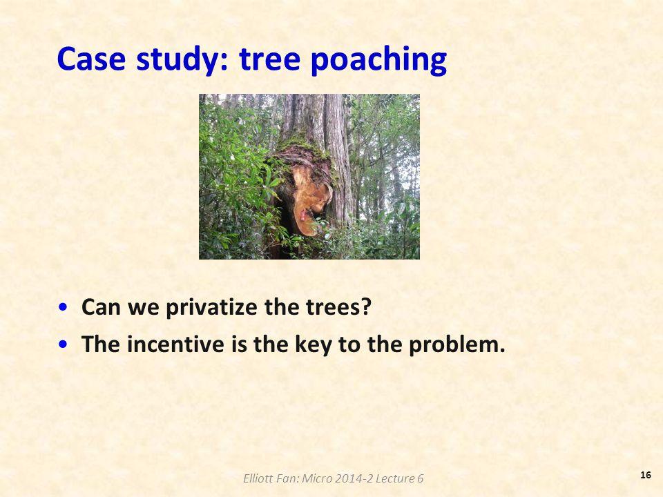 Case study: tree poaching