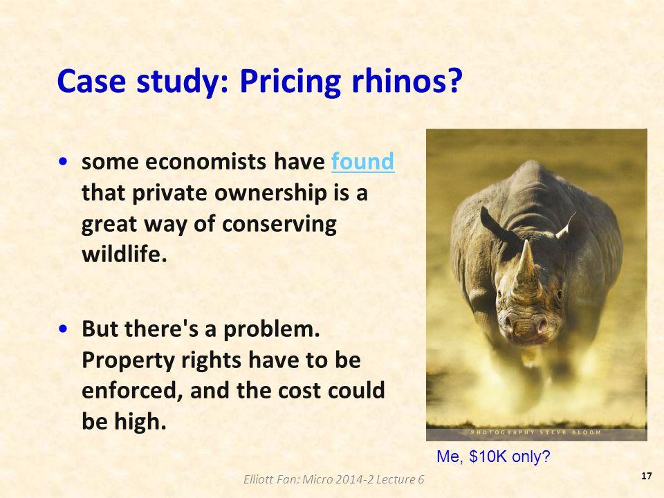 Case study: Pricing rhinos