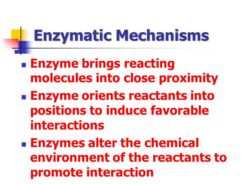Enzymatic Mechanisms Enzyme brings reacting molecules into close proximity. Enzyme orients reactants into positions to induce favorable interactions.