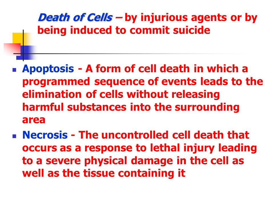 Death of Cells – by injurious agents or by being induced to commit suicide