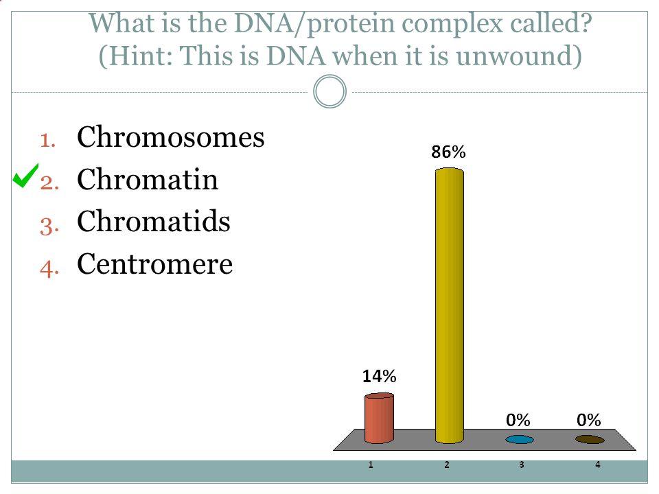 Chromosomes Chromatin Chromatids Centromere