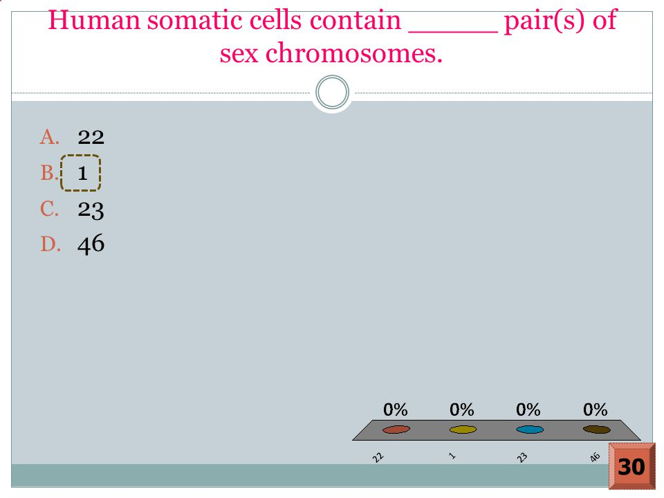 Human somatic cells contain _____ pair(s) of sex chromosomes.