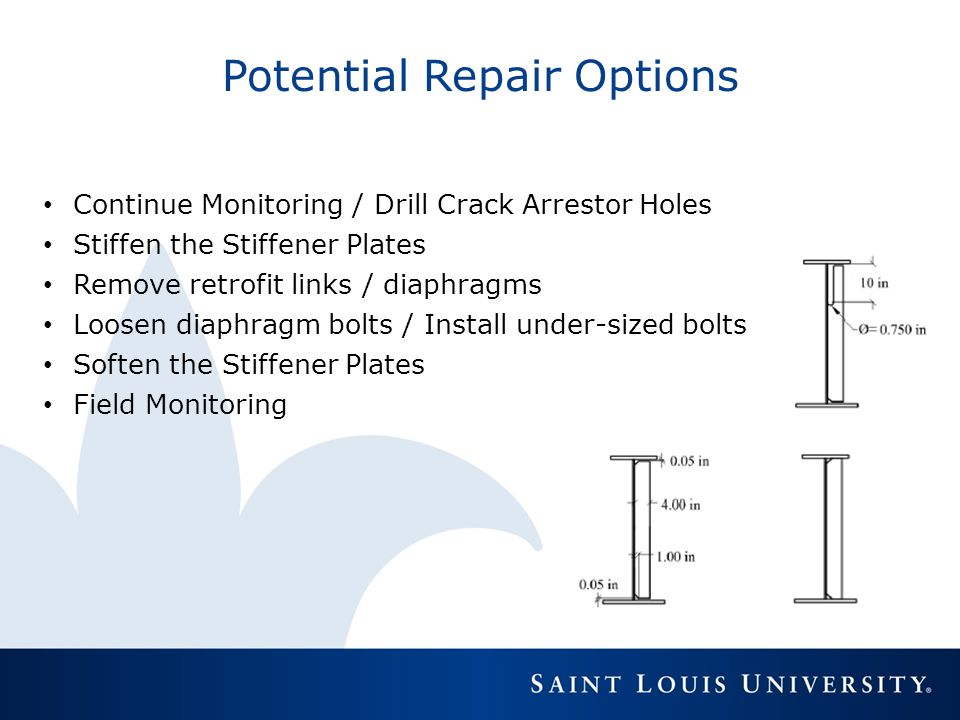 Potential Repair Options