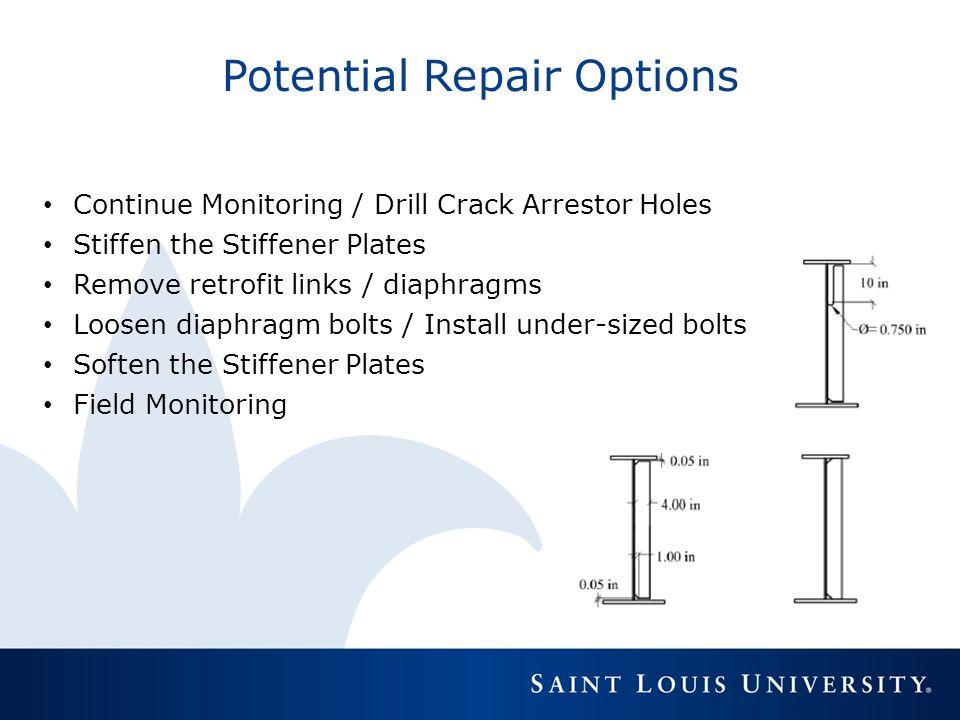Potential Repair Options