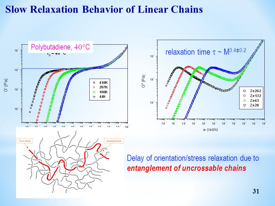 Slow Relaxation Behavior of Linear Chains