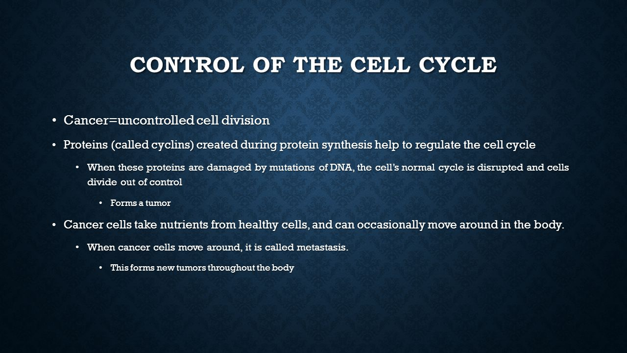 Control of the Cell cycle