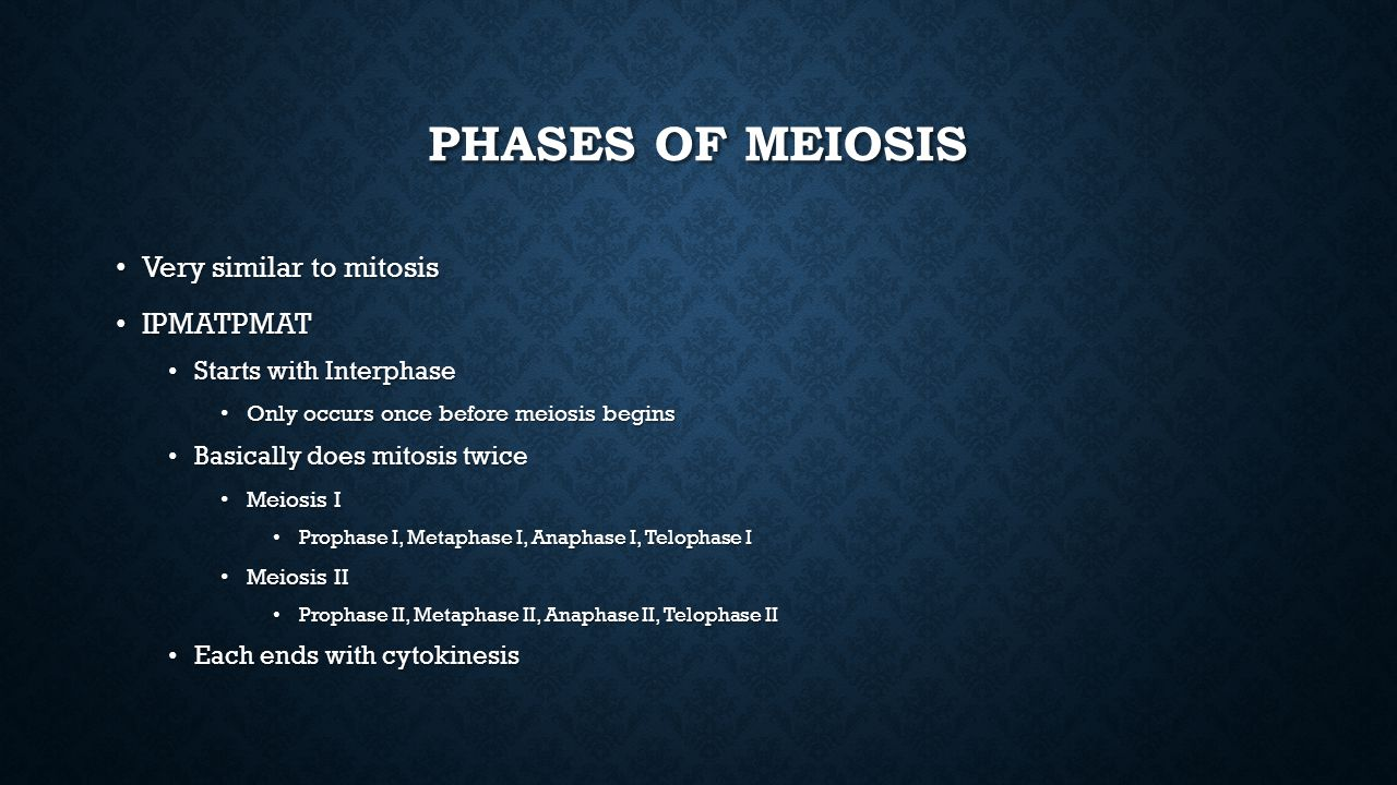 Phases of Meiosis Very similar to mitosis IPMATPMAT