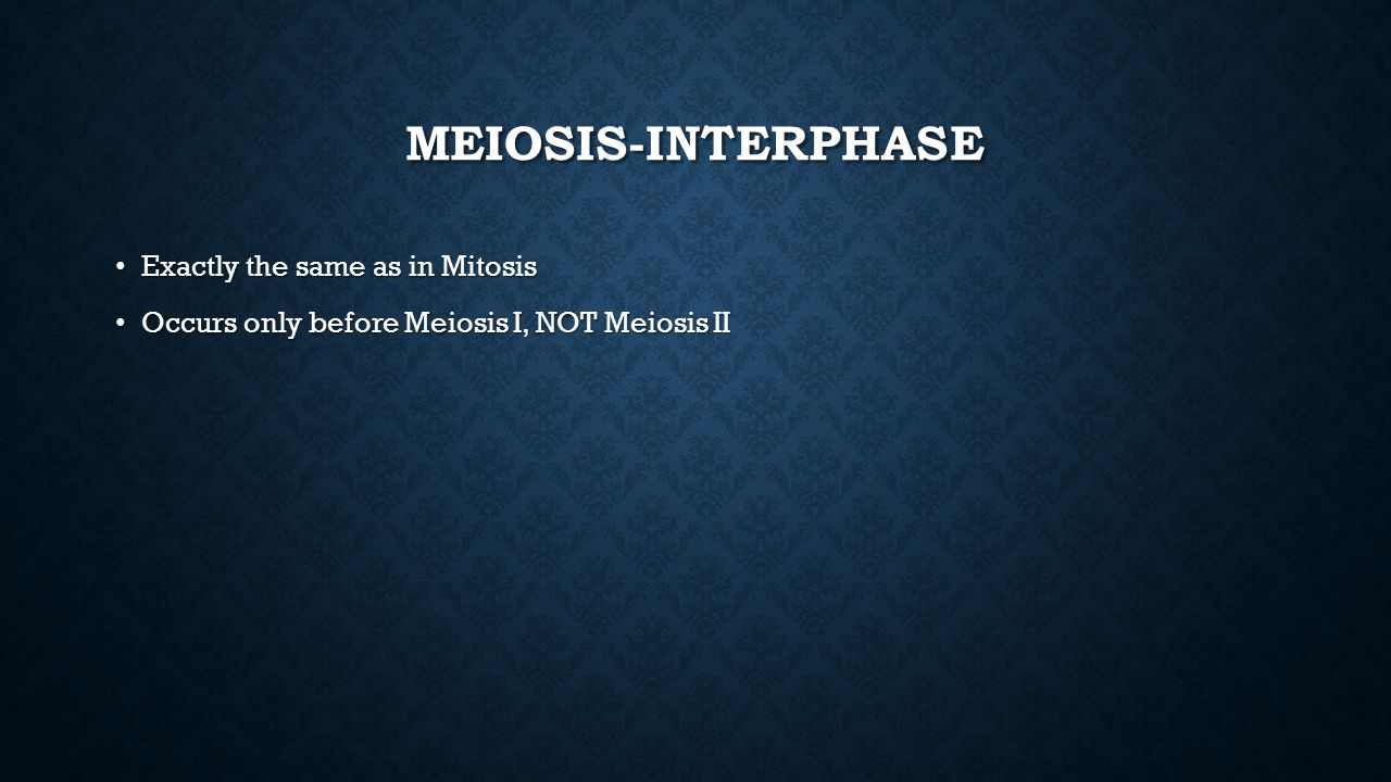 Meiosis-Interphase Exactly the same as in Mitosis