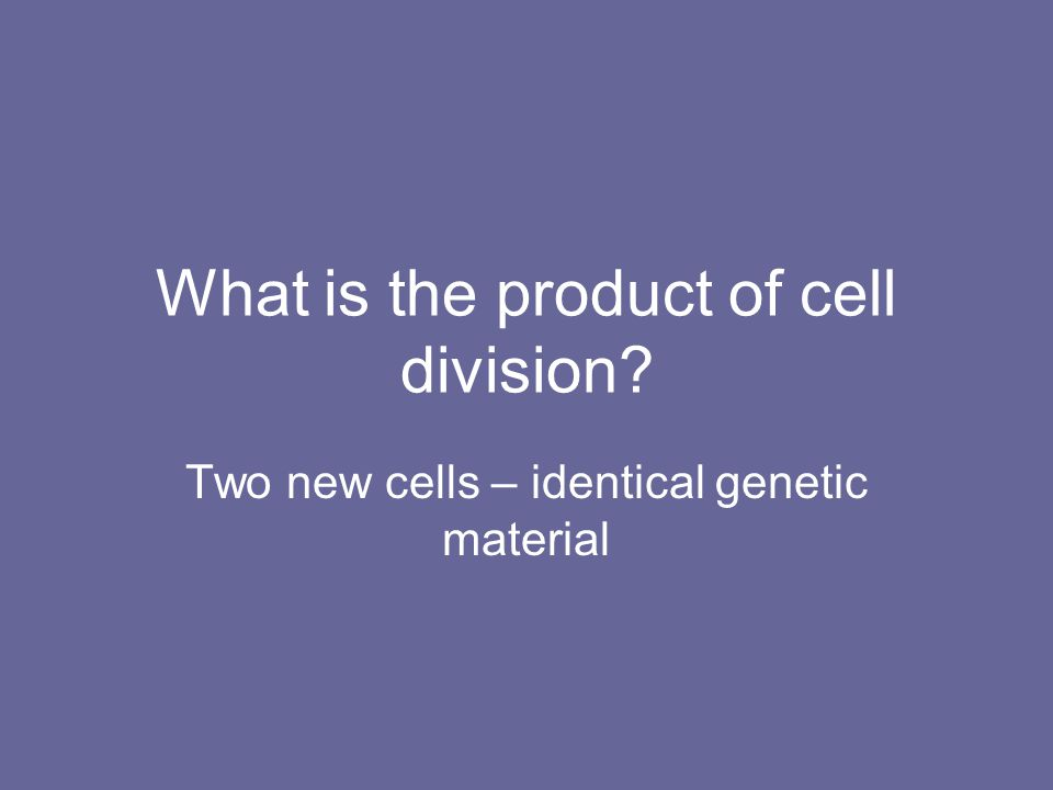 What is the product of cell division