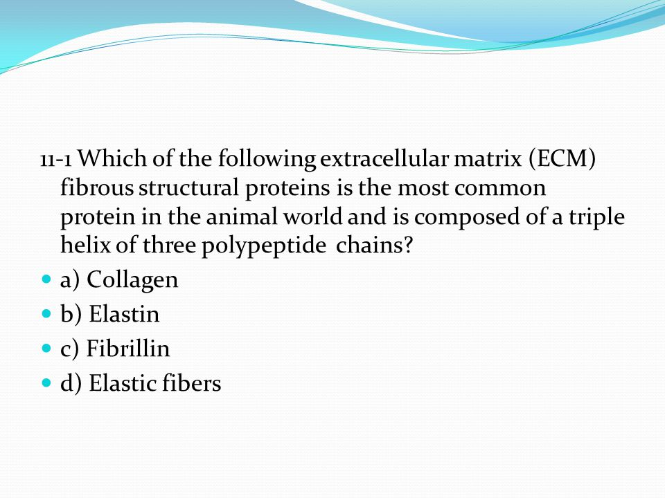 11-1 Which of the following extracellular matrix (ECM) fibrous structural proteins is the most common protein in the animal world and is composed of a triple helix of three polypeptide chains