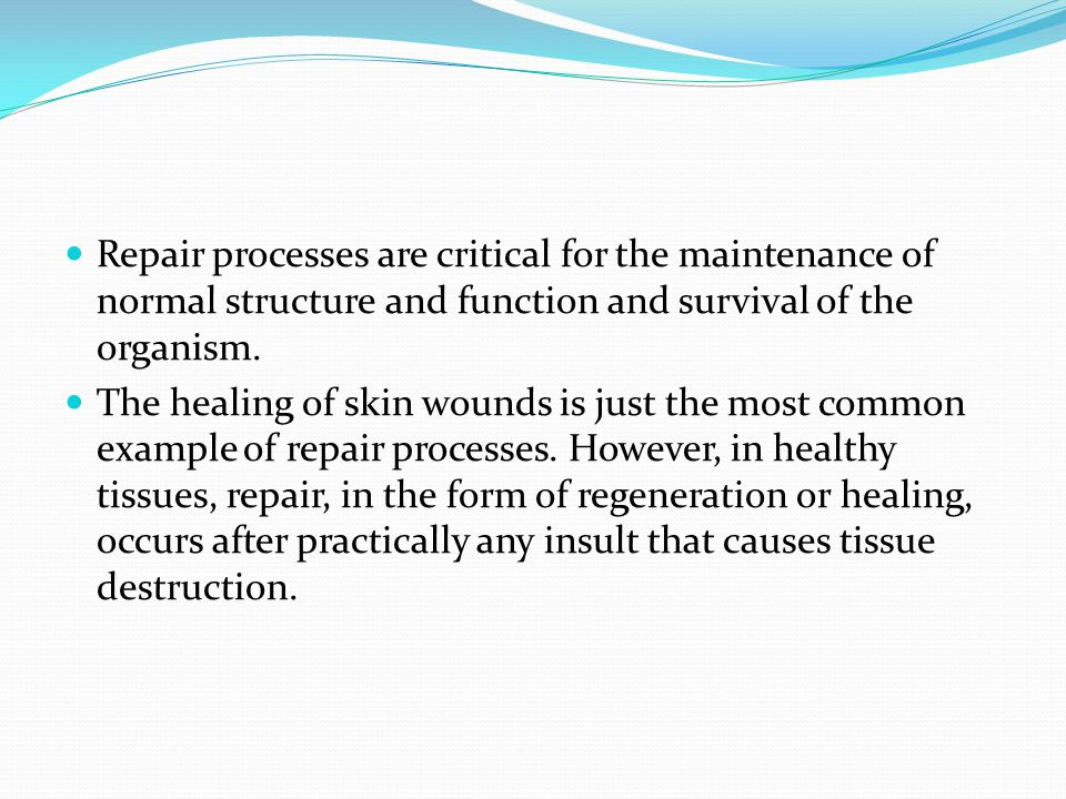 Repair processes are critical for the maintenance of normal structure and function and survival of the organism.