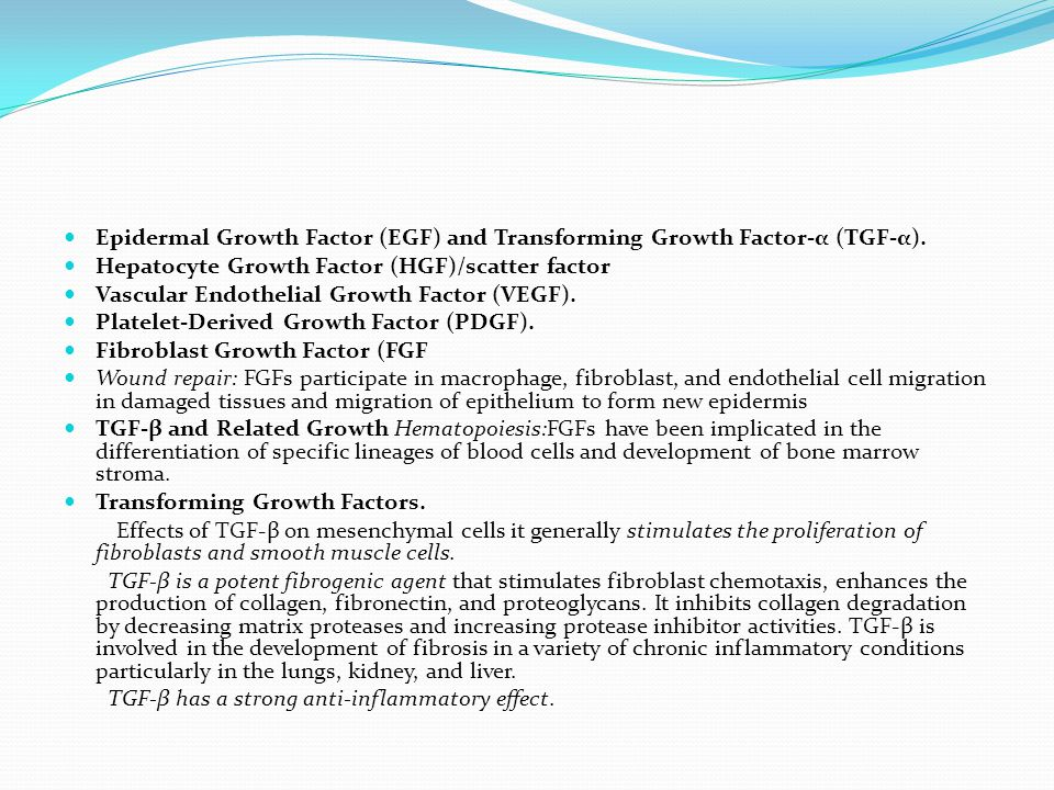 Hepatocyte Growth Factor (HGF)/scatter factor