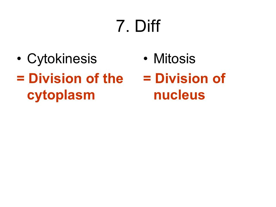 7. Diff Cytokinesis = Division of the cytoplasm Mitosis