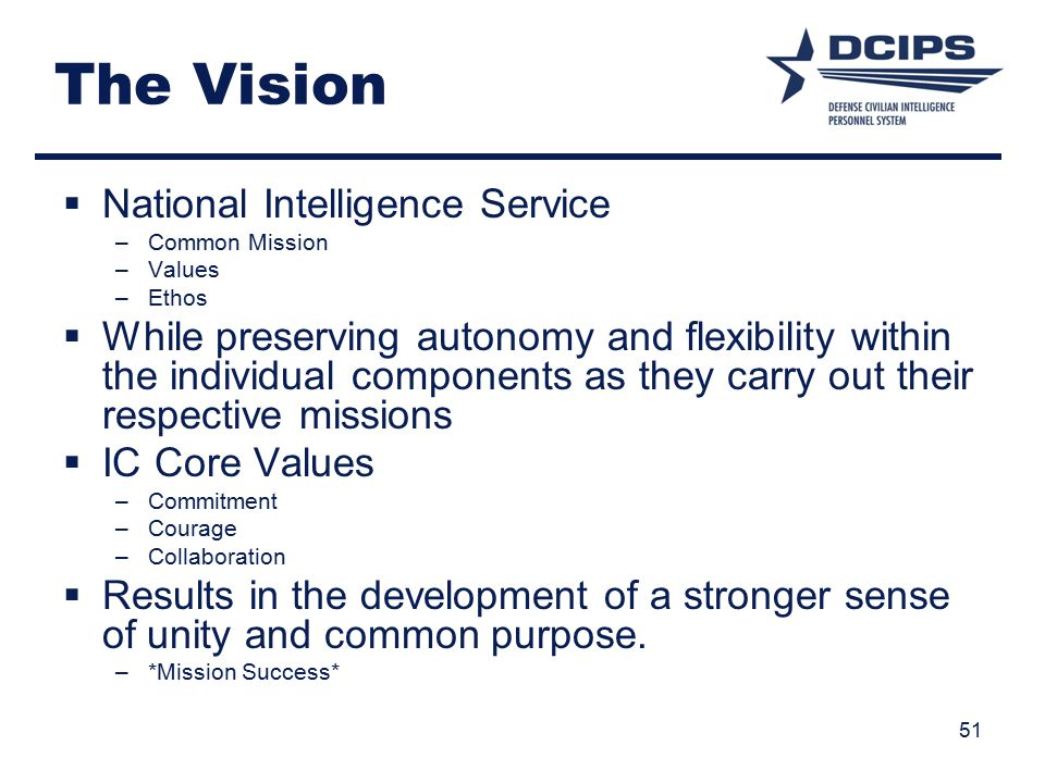 The Vision National Intelligence Service