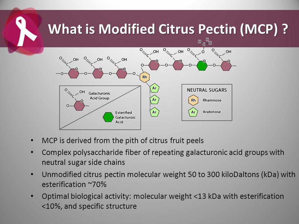 What is Modified Citrus Pectin (MCP)
