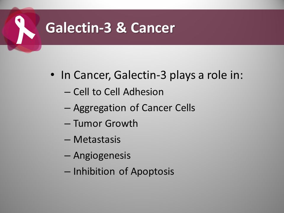 Galectin-3 & Cancer In Cancer, Galectin-3 plays a role in: