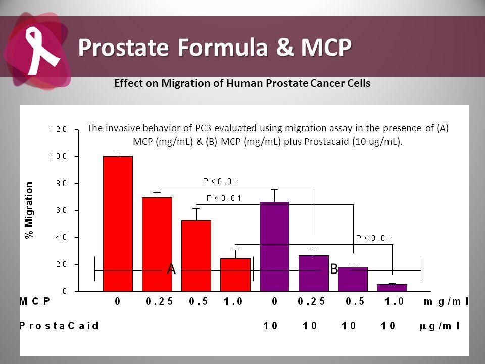 Effect on Migration of Human Prostate Cancer Cells