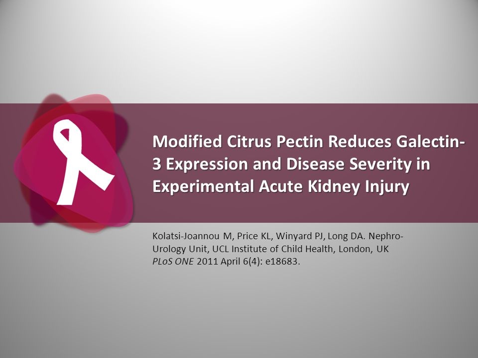 Modified Citrus Pectin Reduces Galectin-3 Expression and Disease Severity in Experimental Acute Kidney Injury