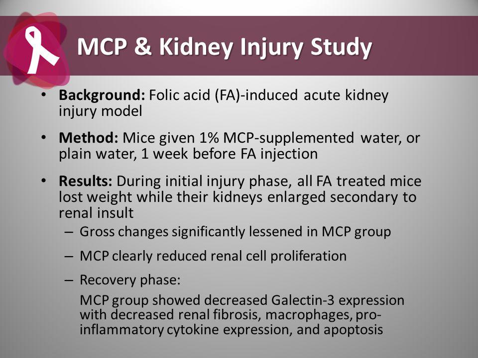 MCP & Kidney Injury Study
