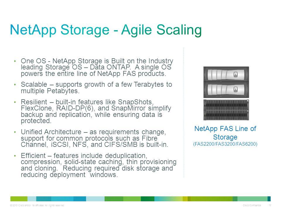 NetApp Storage - Agile Scaling