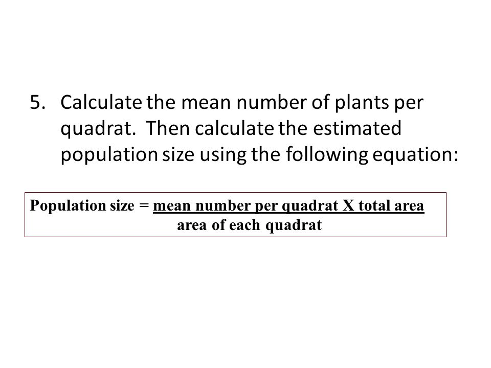 Calculate the mean number of plants per quadrat