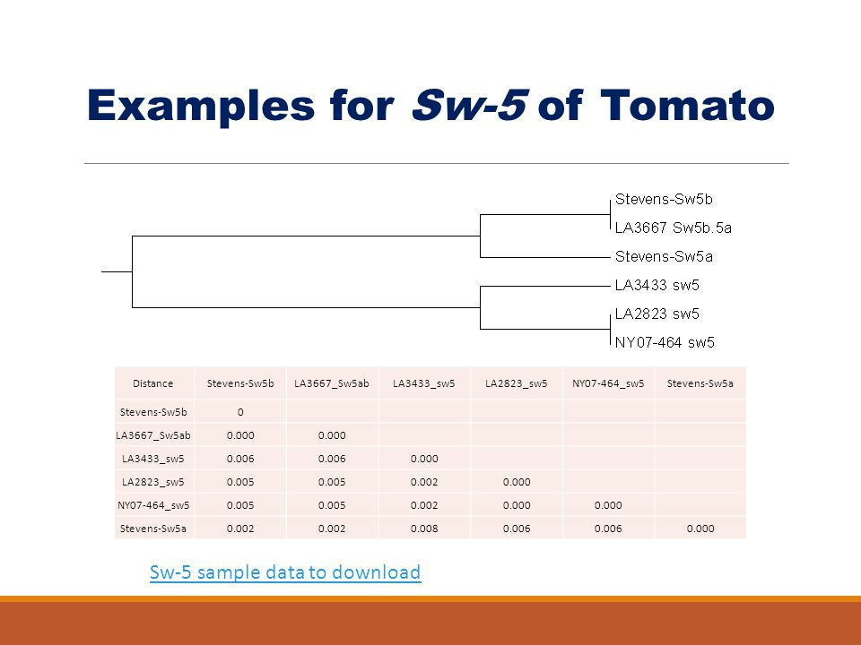Examples for Sw-5 of Tomato